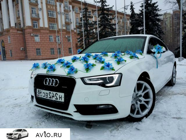 Аренда arenda audi lipeck 6   Audi